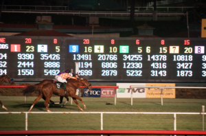Hollywood Park's Final Race